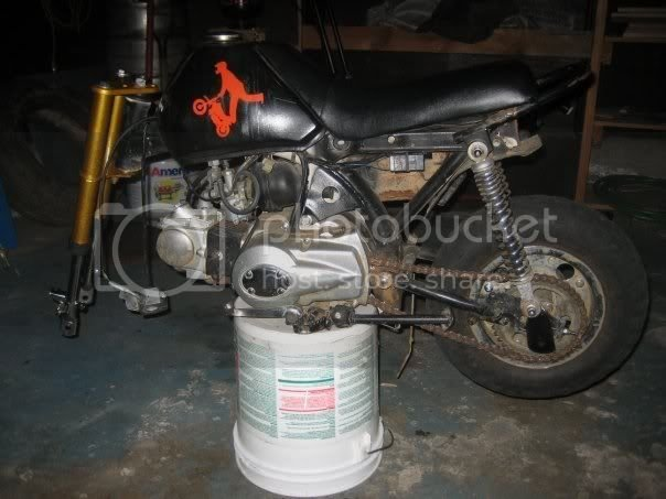 Z50r stunter build | PlanetMinis Forums